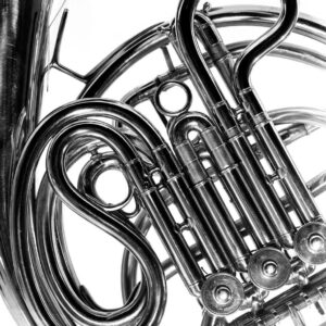 French Horn, Musical Instrumental Series