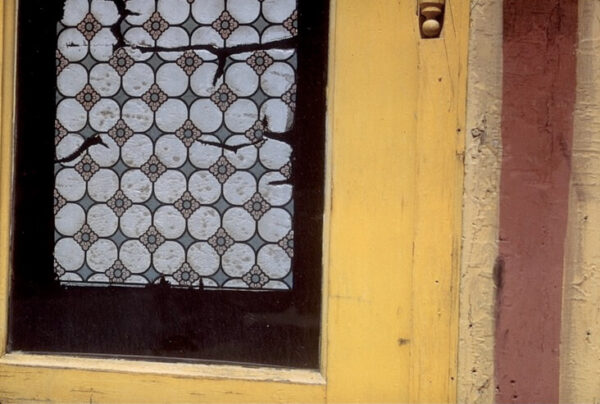 Ferenc Berko - Pioneer of Abstract Photography