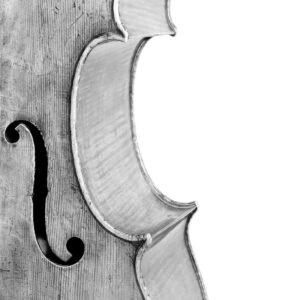 Musical Instruments Series, 2 - Ferenc Berko