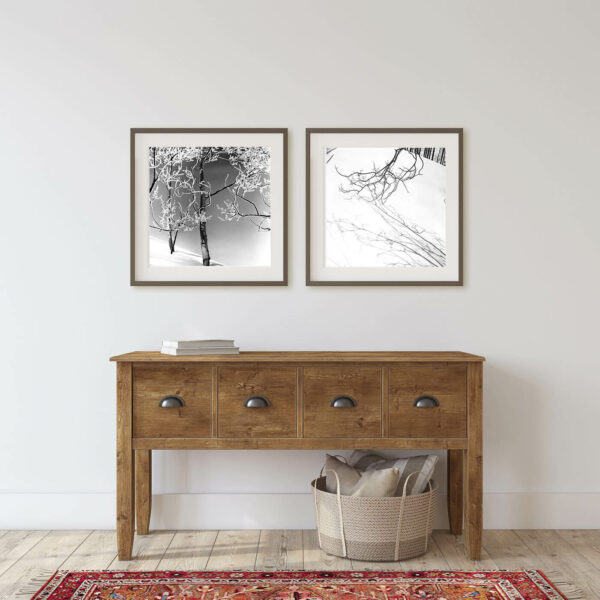 Frosty Trees - Ferenc Berko